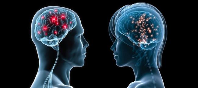 脳信号の違い