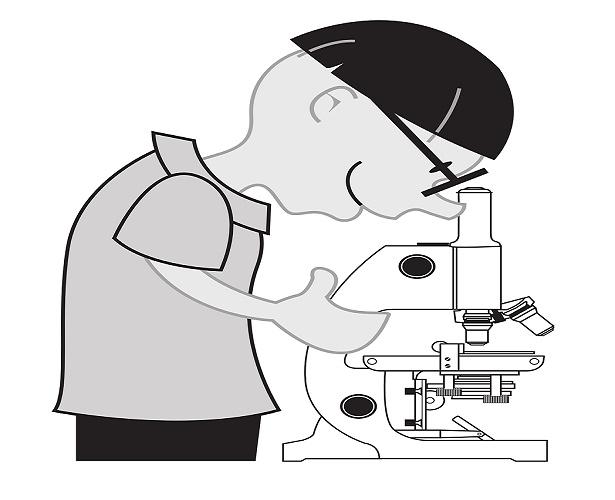 microscopy-148139_615